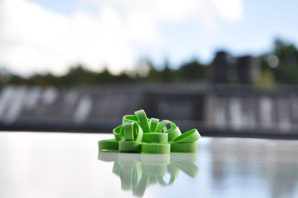 Strumpsnodden lövgröna
